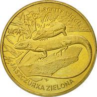 Monnaie, Pologne, 2 Zlote, 2009, Warsaw, SUP+, Laiton, KM:678 - Pologne