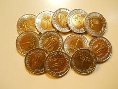 Egypt Lot 12 Coins 1 Pound 2005 BU - Coins & Banknotes
