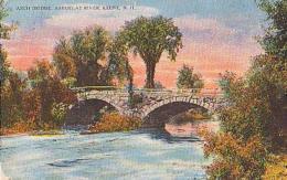 USA        233        Keene.Arch Bridge Ashuelat River - Etats-Unis