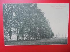 Tongerloo :Abbaye-Lindenlaan (T121) - Westerlo