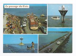 85 Ile De Noirmoutier N°2020 Le Passage Du Gois En 1983 VOIR 2 ZOOMS Citroën DS Bus Chausson Peugeot 404 Break Chiens - Ile De Noirmoutier
