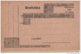Kraljevstvo SHS Overprinted Hungarian Fieldpostcard Tabori Postai Levelezolap Unused B180103 - Ganzsachen