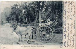A. Burmese Bullock Carriage - Attelage     (101568) - Sri Lanka (Ceilán)
