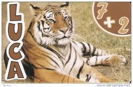 TARJETA DE ESPAÑA DE UN TIGRE (TIGER) - Sin Clasificación