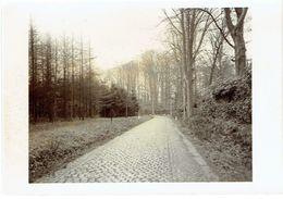 BEERNEM - R.68 Oudenburg - Maldegem (ref. 52081) - Prachtige Originele Foto - 15 X 10,5 Cm. - Beernem