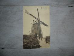 Arendonck (Arendonk)  :  Molen - Moulin - Arendonk
