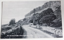 CPA Angleterre Undercliff Blackgang Isle Of Wight - Angleterre
