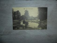 Assche ( Asse)  :   Park Van De Putberg - Asse