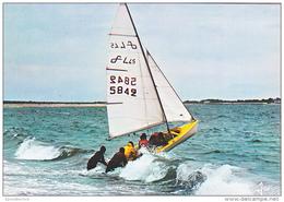 26371 Bout à La Vague -MX 6219 Jos Iris -voile Bretagne Sport - Voile