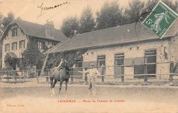 CHAUMES - Haras Du Château De Crénille - Autres Communes