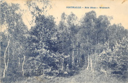 Oostmalle - Bois Blanc - Malle