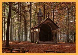 Soignies - Forêt De Soignies - N. D. De Bonne Odeur - Zoniënwoud - O.L.V. Welriekende - LE BERRURIER - Soignies