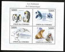 J) 2010 COMOROS, PENGUIN, WHALE, SEAL, WHITE BIRD, SOUVENIR SHEET, MNH - Comoros