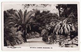 AUSTRALIA, Melbourne Botanical Gardens - C1920s-30s Vintage Rose Series RPPC Real Photo Postcard - Melbourne