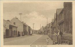 Hensies Rue De Crespin L  (6867) - Hensies