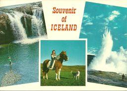 Islanda, Island, Iceland, View, Angling, Riding And Watching Natural Phenomena In Iceland - Islanda