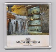 MAGNET -ROMANIA - TRANSILVANIA - City TURDA-Salt Mine Arranged For Tourists- -Salzbergwerk -Mine De Sel - Tourism