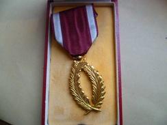 PALMES D'OR Ordre Couronne 45 Ans Officier Police - Belgique