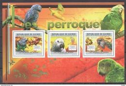 R653 2011 DE GUINEE FAUNA BIRDS LES PERROQUETS PARROTS 1KB MNH - Perroquets & Tropicaux