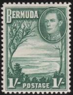 Bermuda        .      SG        .    115a     .     *       .       Ongebruikt   .    /    .  Mint-hinged - Bermuda