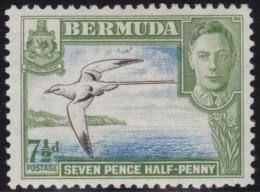 Bermuda        .      SG        .    114c     .     *       .       Ongebruikt   .    /    .  Mint-hinged - Bermuda