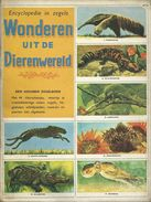 ENCYCLOPEDIE IN ZEGELS N° 21 WONDEREN UIT DE DIERENWERELD ( ALLIGATOR OCTOPUS TAPIR  GALAPAGOS TURTLE CAMELEON ...) 1958 - Encyclopedia