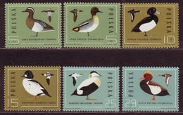 CANARDS - 1985 - POLOGNE - YT N° 2809 / 2814  - ** - Série Complète - Eenden