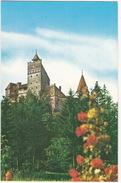 Cetatea Branului (sec. XIV) - The Bran Cathedral  - (Roemenie) - Roemenië