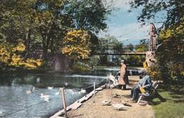 Vilvoorde - Stadspark - Vilvorde - Parc Communal - Vilvoorde