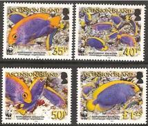Ascension 2007 Yvertn° 902-905 Mi 989-992  *** MNH  Cote 13,00 Euro Faune WWF Poissons Vissen Fish - Ascension (Ile De L')