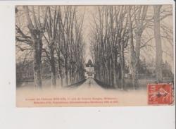 CPA - Avenue Du Chateau BON AIR , 1er Cru De Graves Rouges,  MERIGNAC Médailles D'Or, Expositions Internationales - Merignac