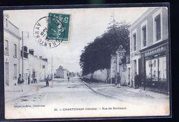CHANTONAY - Chantonnay