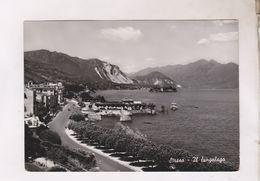 CPM PHOTO STRESA, ALLEE LE LONG DU LAC (voir Timbre) - Italia