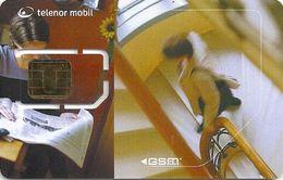 Norway - Telenor Mobil - Stairs & Newspaper (TN-45C) (09.02 On Back) GSM SIM2 Mini Chip, Mint - Norway