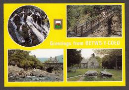 73698/ BETWS-Y-COED - Caernarvonshire