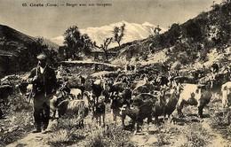 CORSE - BERGER Et Son Troupeau De Chèvres (région De CORTE) - Ed. E. Breteau 1916 - Sin Clasificación