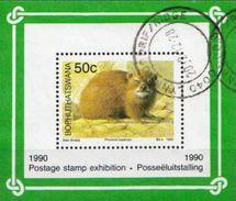 Bophuthatswana SS - Rodents