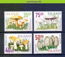 Ndp039 FLORA PADDESTOELEN PADDENSTOELEN MUSHROOMS PILZE CHAMPIGNONS SETAS FUNGHI IJSLAND ISLAND 1999+2000 PF/MNH - Mushrooms