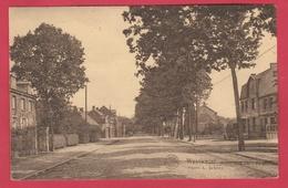 Wuustwezel / Westwezel - Steenweg Naar De Grens ( Verso Zien ) - Wuustwezel
