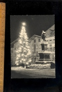 BAD TÖLZ  ( Wolfratshausen ) Weihnacht Baum Sapin De Noël Christmas Tree - Bad Toelz