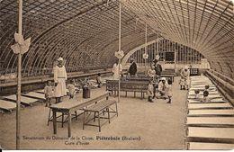 Piétrebais (1315) :Sanatorium Du Domaine De La Chise - Jeunes Enfants En Cure D'hiver, Carte N° 4. CPA. - Incourt