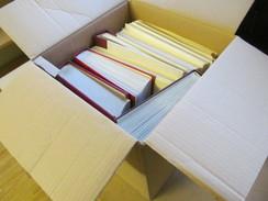 Deutschland U Europa,Nachlassposten Im Karton Meist Im Lindner Vordruck Mit Reichlich **/o Sammlungen!!!!!! - Boites A Timbres