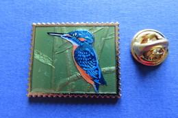 Pin's, Oiseau, Martin-Pêcheur, Eisvogel, Briefmarken-Form, Philswiss-Pin, Bird - Animals
