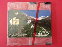 AND 17 100u NARCISSES BLANCS Fleur Nature NEUVE NSB - Andorra