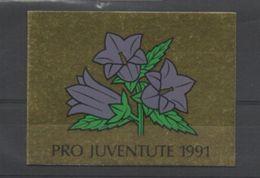 1991 Pro Juventute, Gestempelt, Ersttag - Markenheftchen
