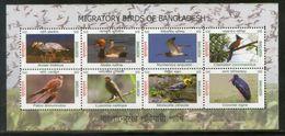 Bangladesh 2013 Migratory Birds Stroks Cuckoo Goose Duck Wildlife Sheetlet # 6318 - Storks & Long-legged Wading Birds