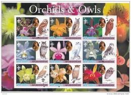 Hiboux Owls Uilen Afghanistan 2003 Oblitérés-Used-Gestempeld - Uilen