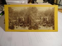 VICHY - Le Gour Saillant à L'Ardoisière..publié Par Mesnard Au Pacha  à Vichy - Photos Stéréoscopiques
