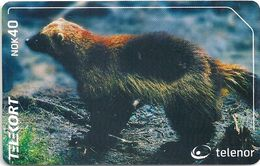 Norway - Telenor - Jerv (Wolverine), N-221A - 23U, 1.000ex, Mint (Check Photos!) - Norway