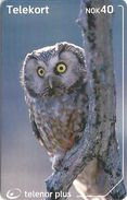 Norway - Telenor - Parleugle Bird - N-246 - 08.2002, 90.000ex, Used - Norway